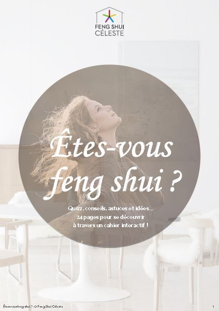 Stratégie commerciale et marketing Feng Shui Céleste
